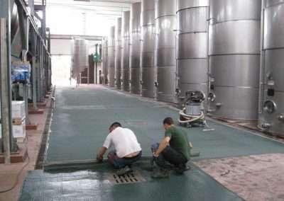 Foto resine settore vitivinicolo
